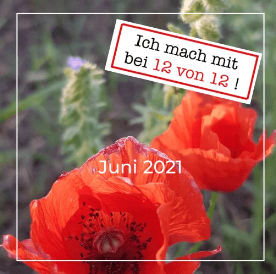 12 von 12: mein Tag in Bildern (12. Juni 2021)