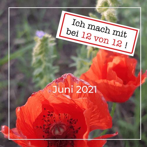 You are currently viewing 12 von 12: mein Tag in Bildern (12. Juni 2021)