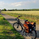 Rad mit Satteltaschen vor Feld