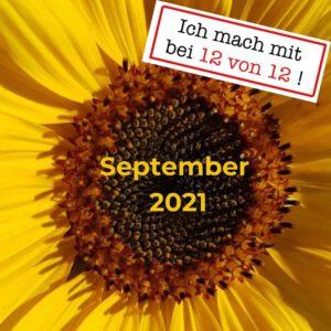 Read more about the article 12 von 12: Mein Tag in Bildern (12. September 2021)