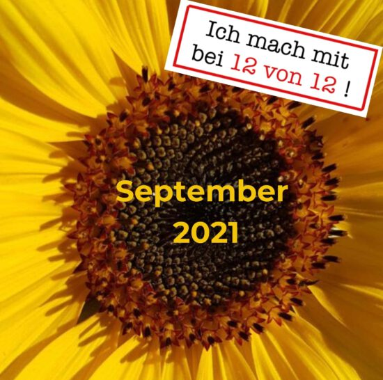 12 von 12: Mein Tag in Bildern (12. September 2021)